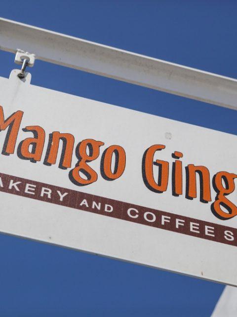 Mango Ginger Observatory 23